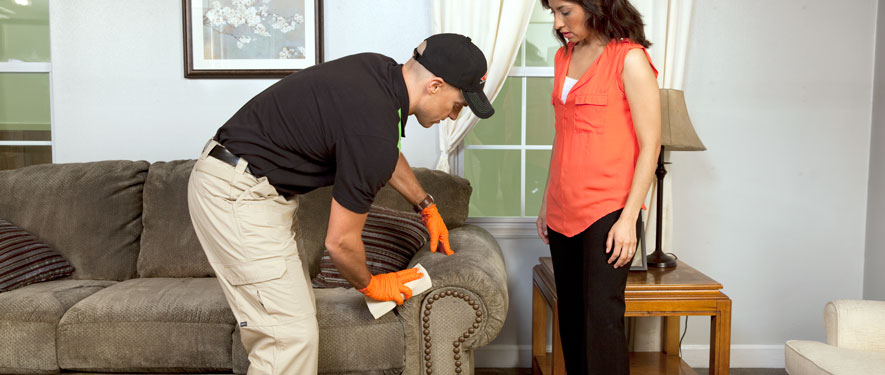 Seattle, WA carpet upholstery cleaning